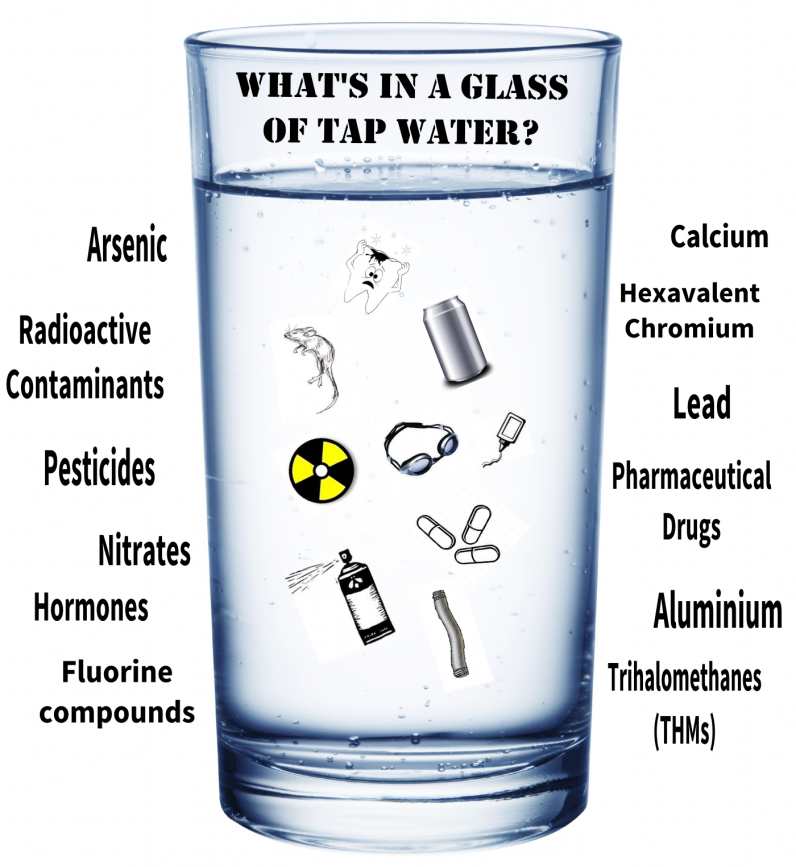 Whats in your Tap water