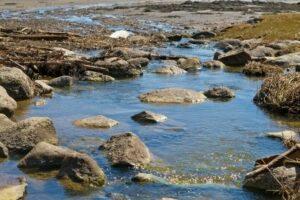 water runoff in nature